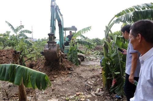 广东房屋因台风受损,可减税或免税