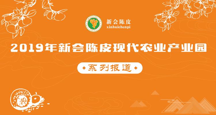 新会陈皮现代农业产业园专题