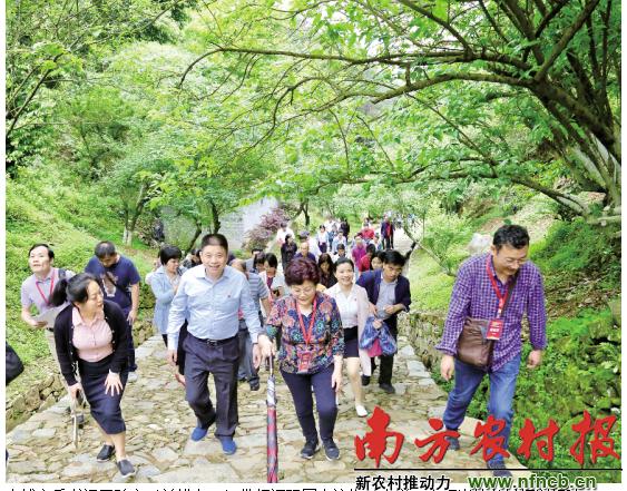 全国30余家涉农媒体总编辑走进韶关南雄,探寻乡村振兴轨迹