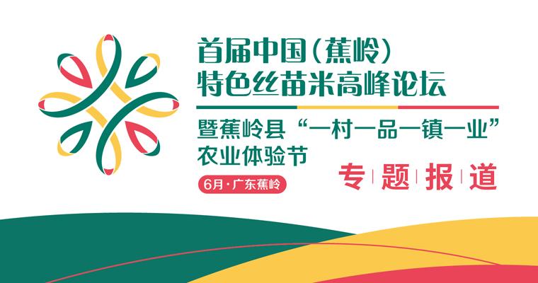 首届中国(蕉岭)特色丝苗米高峰论坛专题报道