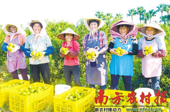 重塑农业价值的南粤大手笔——看广东如何建设现代农业产业园