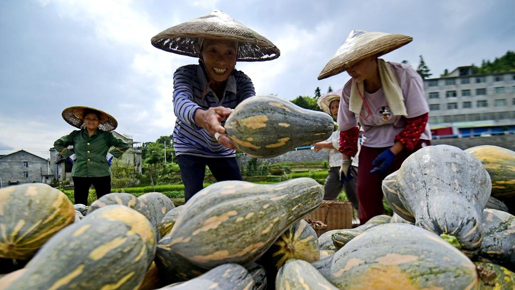 前三季度中国GDP同比增长9.8%